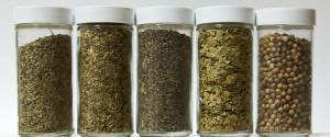 Gluten Free Spices